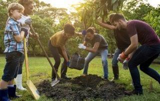 eco friendly tree planting initiative